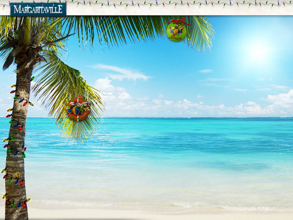 Jimmy Buffett Wallpaper Free Download